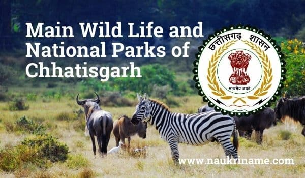 Main Wild Life and National Parks of Chhatisgarh