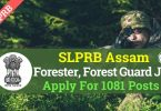 SLPRB Assam Recruitment